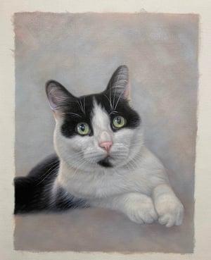 Vivienne Portrait